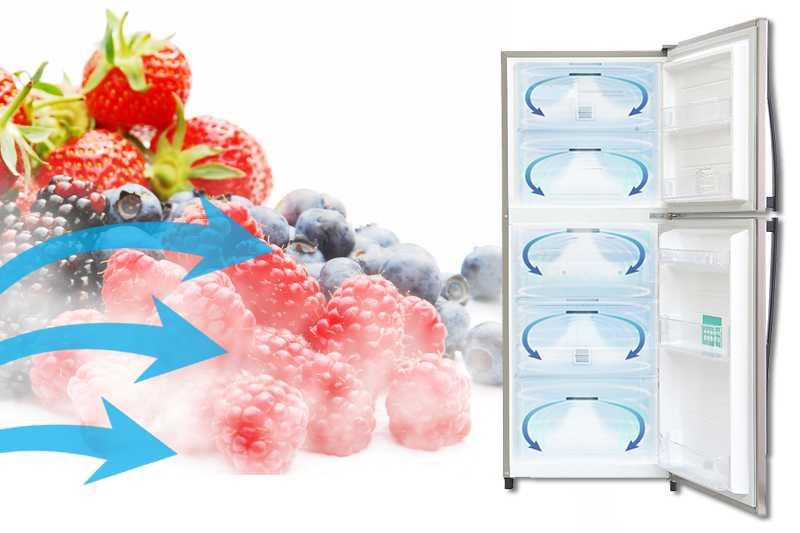 Nhờ công nghệ luồng khí lạnh có hình vòng cung, tủ lạnh Toshiba GR-S25VPB sẽ làm lạnh mọi thực phẩm ở bên trong tủ