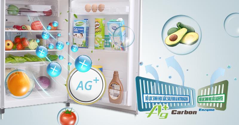 Công nghệ Hybrid Bio được lắp sau ngăn làm mát, hỗ trợ khử mùi những thực phẩm như cá, tôm, nước tương, sữa,… cho tủ lạnh Toshiba GR-S21VPB