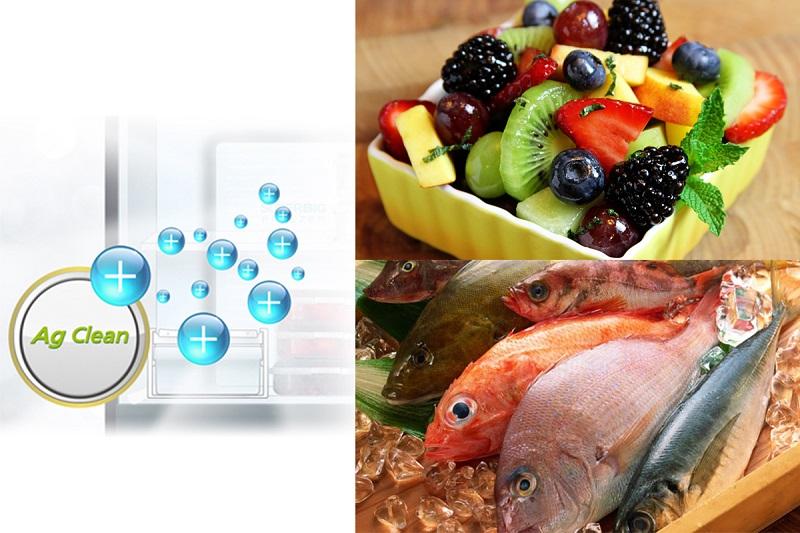 Khử sạch mùi hôi và vi khuẩn bên trong tủ lạnh