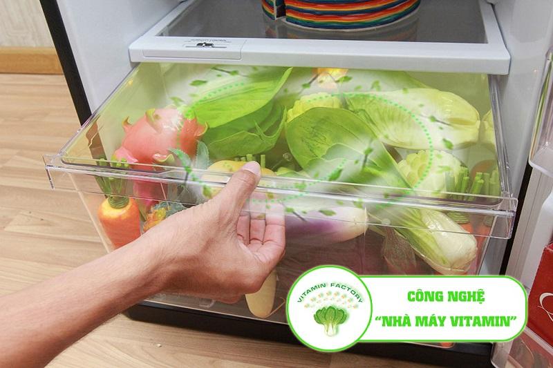 Ngăn rau củ của tủ lạnh Mitsubishi Electric MR-FV24J-BR-V được mệnh danh như một nhà máy Vitamin