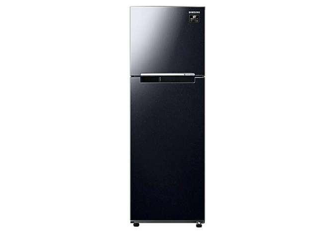 Samsung Inverter Fridge 256 liters RT25M4032BU/SV